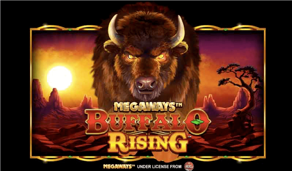 Buffalo Rising
