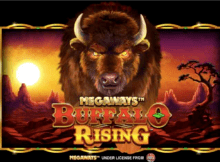 Buffalo Rising RTP